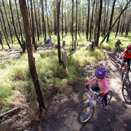 Revamped Website Peddles the Delights of Biking Trails